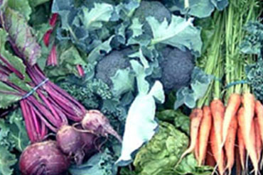 Locally farmed veggie boxes